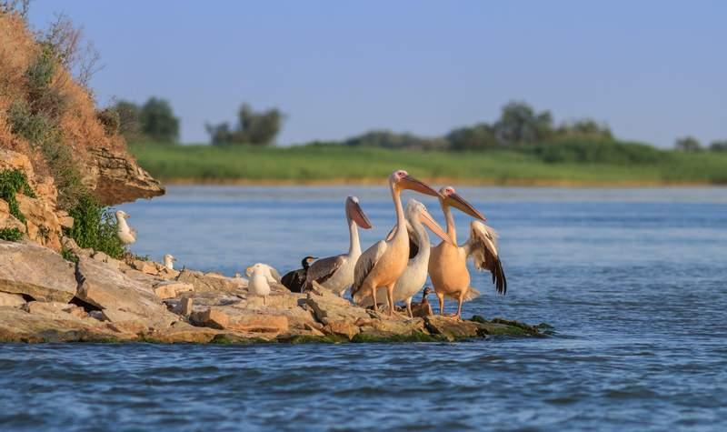 Titelbild der Reise Thurgau Silence: 8-Länderfahrt zum Donaudelta